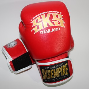 boxing gloves rnw002a
