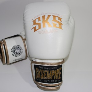 boxing gloves rnw007a