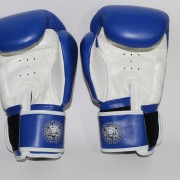 boxing gloves rnw003c