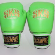 boxing gloves rnw004b