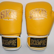 boxing gloves rnw006b