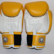 boxing gloves rnw003d