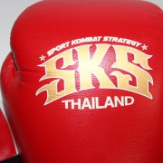 boxing gloves rnw001c