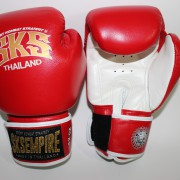 boxing gloves rnw002b