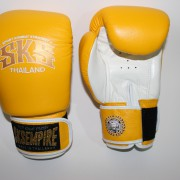 boxing gloves rnw006c