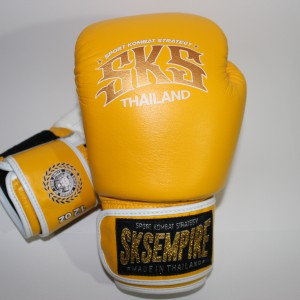 boxing gloves rnw006a